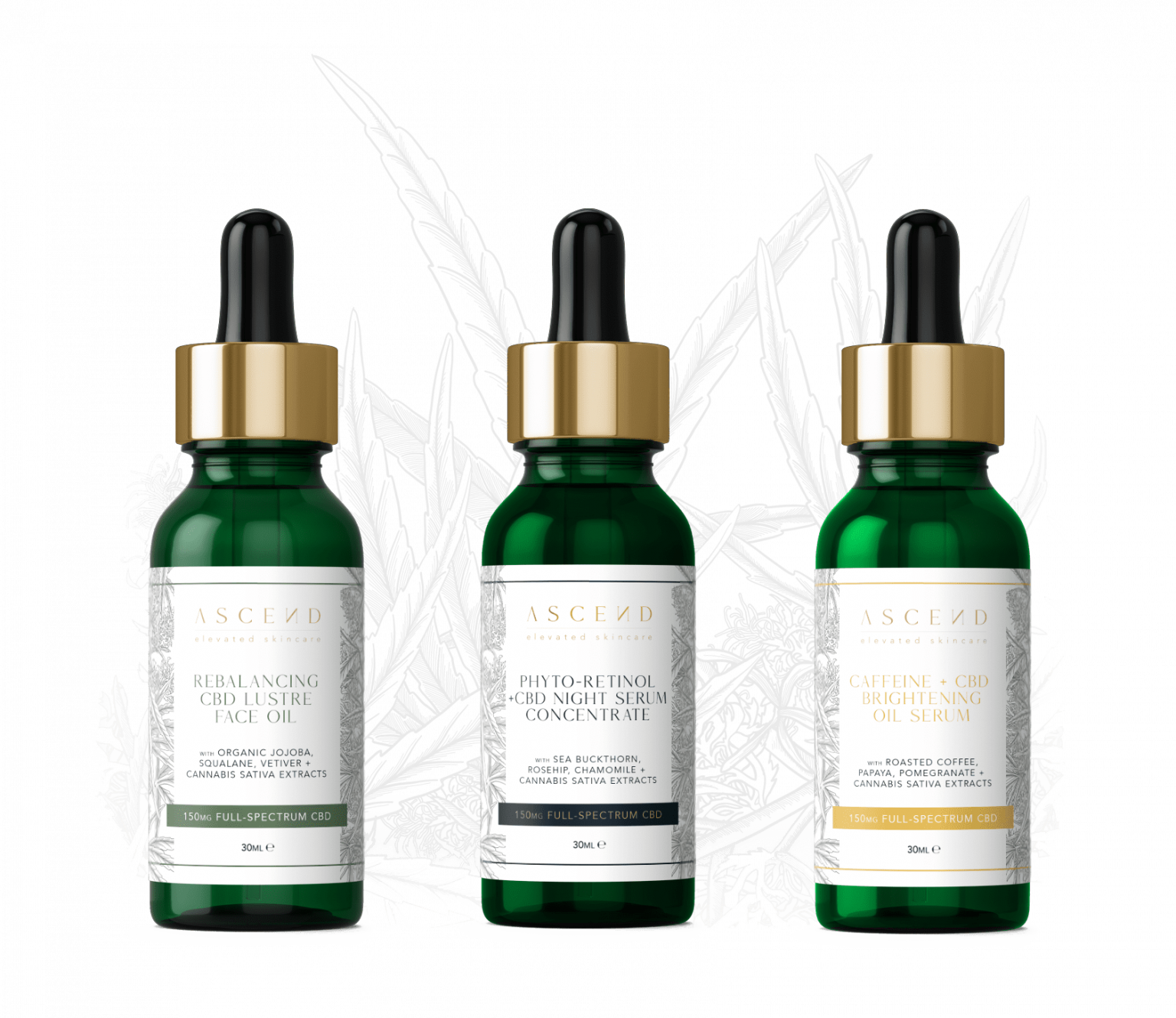 ASCEND Elevated Skincare products all our different serums and oils in a row.
